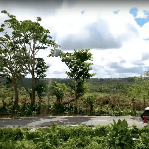punta-cana-excursion-things-to-do-attraction-activities-super-jeep70