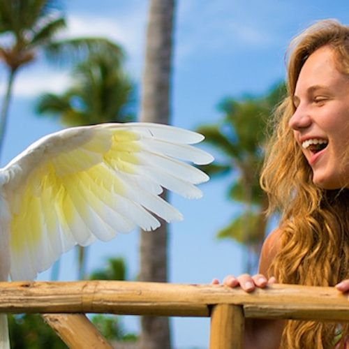 punta-cana-excursion-things-to-do-attraction-activities-tour-funtastic7