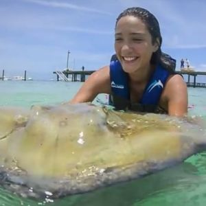punta-cana-excursion-things-to-do-attraction-activities-tour-shark-rays10