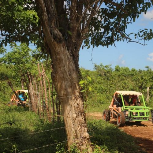 punta-cana-excursion-things-to-do-attraction-activities-tours-nation-BUGGY-F20K9