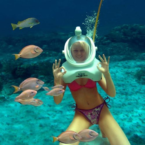 punta-cana-things-to-do---seaquarium---swim-with-shark---swim-with-rays---snorkeling---punta-cana8