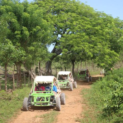 punta-cana-excursion-things-to-do-attraction-activities-tours-nation-BUGGY-F20K28