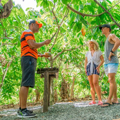 punta-cana-excursion-things-to-do-attraction-activities-tours-nation-jungle-rally-vip35
