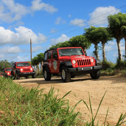 punta-cana-excursion-things-to-do-attraction-activities-super-jeep27