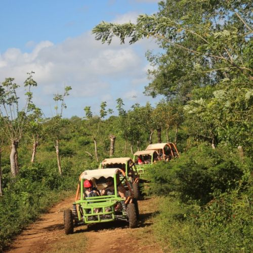 punta-cana-excursion-things-to-do-attraction-activities-tours-nation-BUGGY-F30K21