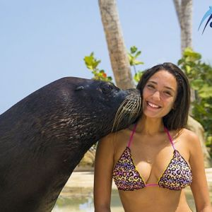 punta-cana-excursion-things-to-do-attraction-activities-tour-seals9