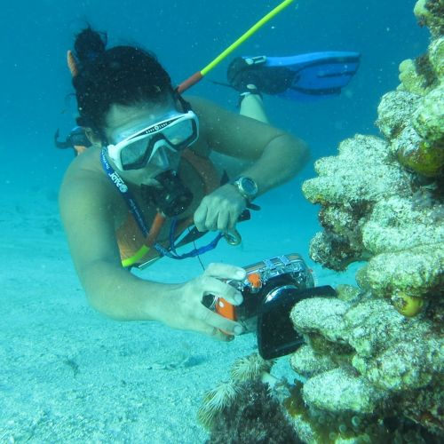 Punta-Cana---things-to-do---Snorkel---Power-Dive---Hookah-Diving-8