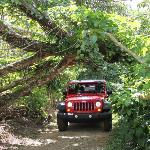 punta-cana-excursion-things-to-do-attraction-activities-super-jeep19