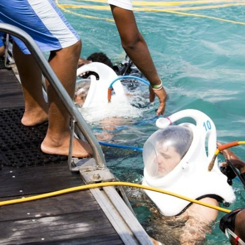 punta-cana-excursion-things-to-do-attraction-activities-tours-nation-seaquarium3