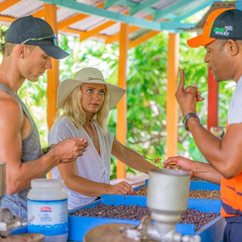 punta-cana-excursion-things-to-do-attraction-activities-tours-nation-jungle-rally-vip31