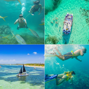 Things-to-do-Punta-Cana---Dive---Diving---Snorkeling---Catamaran---Party-Boat---POWER-DIVE