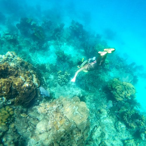 dominican-republic-puerto-plata-things-to-do-must-do-excursions-tours-attractions-cayo-arena-punta-rucia10