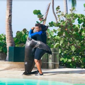 punta-cana-excursion-things-to-do-attraction-activities-tour-seals10