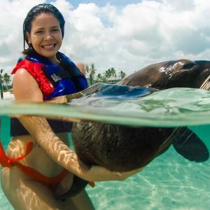 punta-cana-excursion-things-to-do-attraction-activities-tour-seals1