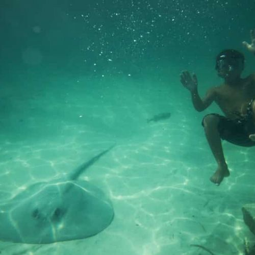 punta-cana-excursion-things-to-do-attraction-activities-tours-nation-seaquarium14