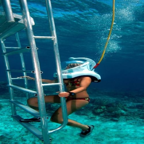 punta-cana-excursion-things-to-do-attraction-activities-tours-nation-seaquarium22