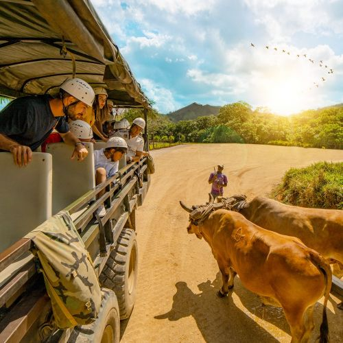 punta-cana-excursion-things-to-do-attraction-activities-tours-nation-la-hacienda6
