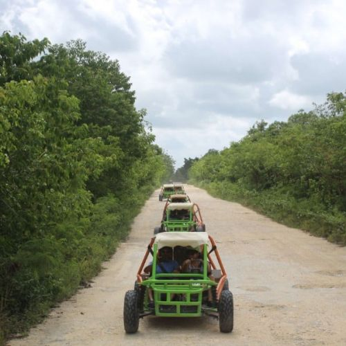 punta-cana-excursion-things-to-do-attraction-activities-tours-nation-BUGGY-F20K17