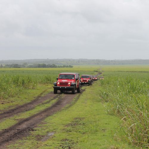 punta-cana-excursion-things-to-do-attraction-activities-super-jeep14