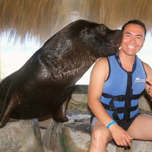 punta-cana-excursion-things-to-do-attraction-activities-tour-seals12