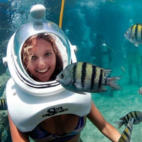 punta-cana-things-to-do---seaquarium---swim-with-shark---swim-with-rays---snorkeling---punta-cana1