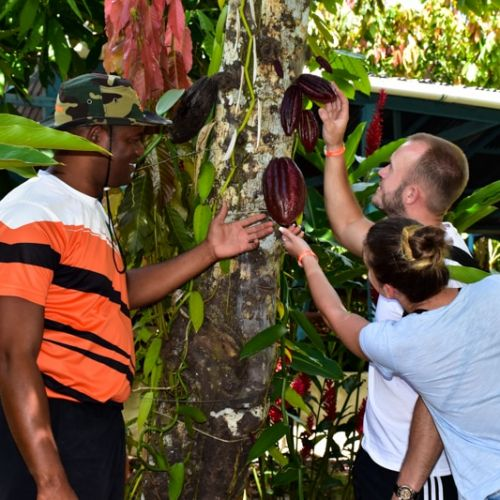 punta-cana-excursion-things-to-do-attraction-activities-tours-nation-jungle-rally-vip12