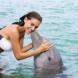 dominican-republic-punta-cana-things-to-do-must-do-excursions-tours-attractions-dolphin-island-dolphin-toursnation3
