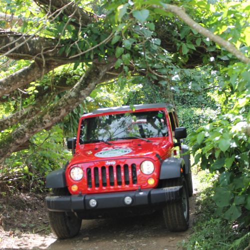 punta-cana-excursion-things-to-do-attraction-activities-super-jeep20